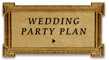 WEDDING PARTY PLAN